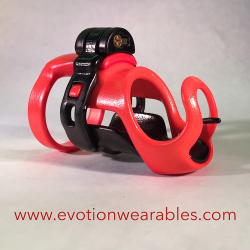 Evotion Wearables 貞操具