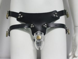 cb6000-clear-chastity-cage-and-belt-1046-p