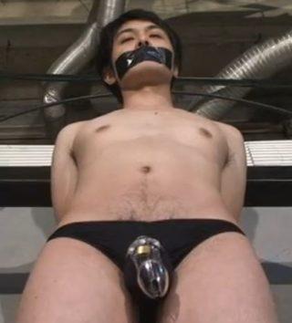 色白青年が貞操帯と拘束具を嵌められコギャルに調教される