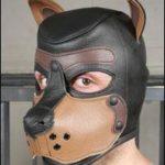 k9-puppy-hood-ht236t-tn